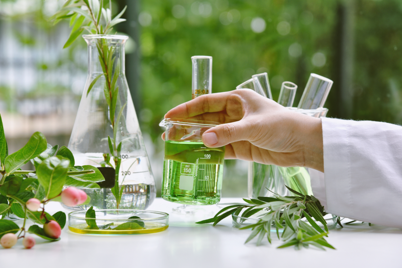 Methods of Plant Extraction